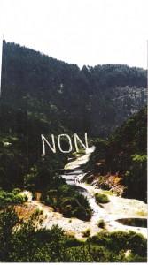 noncouleur 2 (2)